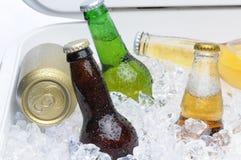 Sortierte Bierflaschen und Dosen im Kühler Stockfotografie