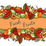 Sortierte Früchte stock abbildung