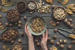 Sortierte Nüsse und Herbstlaub Lizenzfreie Stockfotografie