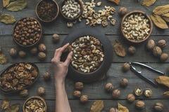 Sortierte Nüsse und Herbstlaub Lizenzfreies Stockfoto