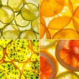 Sortierte quadratische Collage von 4 hintergrundbeleuchteten Fruchtscheiben Stockbild
