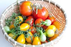 Sortierte Tomaten innerhalb des Bambuskorbes lizenzfreie stockfotografie