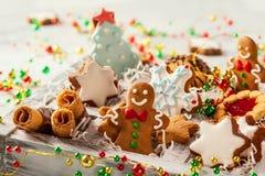 Sortierte Weihnachtsplätzchen Stockbilder