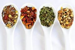 Sortierter trockener Tee des Kräuterwellness in den Löffeln Lizenzfreie Stockfotos