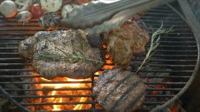 Sortiertes Fleisch mit der Rosmarinzweignahaufnahme, gegrillt, Feuer durchsickernd, verschiedene Arten des Fleisches und Gemüse a stock footage
