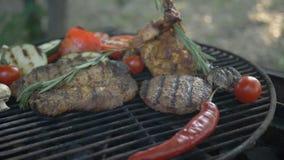 Sortiertes Fleisch mit Rosmarinzweignahaufnahme und im Hintergrund grillte Gemüse, der Hintergrund wird verwischt, stock footage