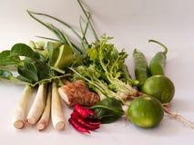 Sortiertes Gemüse Lizenzfreies Stockfoto