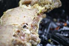 Sortiertes köstliches Fleisch mit Gemüse lizenzfreie stockbilder