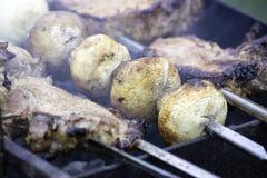 Sortiertes köstliches Fleisch mit Gemüse stockfotos