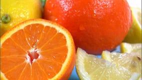 Sortiertes Zitrusfruchtdrehen stock video footage