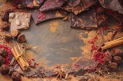 Sortiment av chokladstänger, tryfflar, kryddor och kakaopulver royaltyfri foto