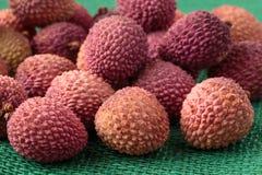 Sortiment av exotiska frukter för smaklig och ny litchiplommon Royaltyfri Foto