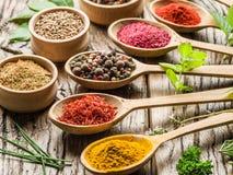 Sortiment av färgrika kryddor arkivbild