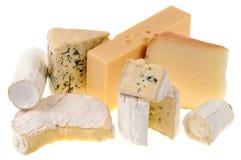 Sortiment av franska ostar p? en vit bakgrund arkivfoto