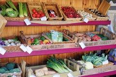 Sortiment av grönsaker på skärm på stånd i England, U K royaltyfri fotografi