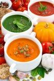 sortiment av grönsakkrämsoppor och ingredienser, lodlinje arkivbild