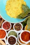 Sortiment av indiska kryddor Arkivbild