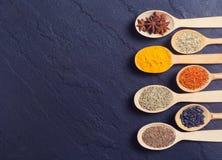 Sortiment av indiska kryddor Royaltyfri Bild
