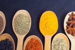 Sortiment av indiska kryddor Arkivfoton