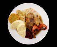 Sortiment av kött, kalkon och surkålen - traditionell tjeck D Royaltyfri Bild