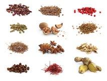 Sortiment av kryddor Royaltyfri Fotografi