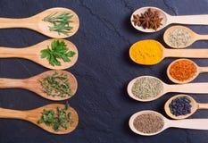 Sortiment av kryddor Fotografering för Bildbyråer