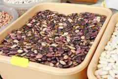 Sortiment av mångfärgade bönor, färgrika haricotbönor bakgrund, bästa sikt Olika bönor för torkad skidfrukt för bakgrund Wallpape royaltyfri fotografi