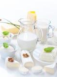 Sortiment av mejeriprodukter royaltyfri bild