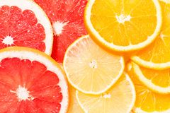 Sortiment av nya citrusa skivor, bästa sikt Royaltyfri Foto