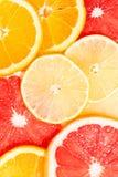 Sortiment av nya citrusa skivor, vertikal bästa sikt Arkivfoton