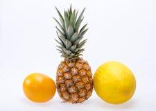 Sortiment av nya exotiska frukter Royaltyfria Foton