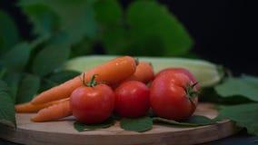 Sortiment av nya grönsaker Arkivfoton