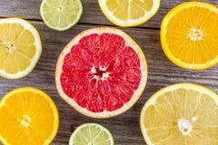 Sortiment av nya organiska citrusfrukter arkivfoto