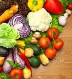 Sortiment av nya organiska grönsaker Fotografering för Bildbyråer
