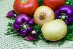 Sortiment av nya rå grönsaker på en servett Valet inkluderar potatisen, tomaten, salladslöken, peppar, vitlök och dill Arkivfoto