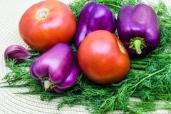 Sortiment av nya rå grönsaker på en servett Valet inkluderar tomaten, salladslöken, peppar, vitlök och dill Fotografering för Bildbyråer