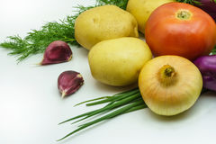 Sortiment av nya rå grönsaker på vit bakgrund Valet inkluderar potatisen, tomaten, salladslöken, vitlök och dill Arkivfoton