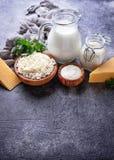 Sortiment av olika mejeriprodukter Royaltyfria Foton