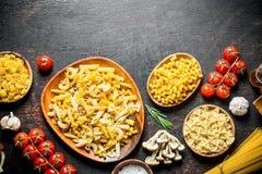 Sortiment av olika typer av rå pasta med champinjoner, tomater och vitlök royaltyfria foton