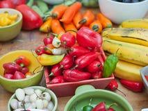Sortiment av peruanska peppar för varm chili Royaltyfri Fotografi