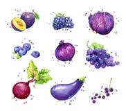Sortiment av purpurfärgade foods, vattenfärgfrukt och vegtables stock illustrationer