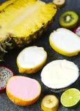 Sortiment av sorbet med naturliga exotiska frukter Royaltyfri Bild