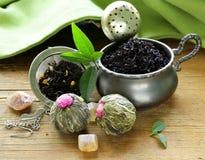 Sortiment av te - svart blad, gräsplan som är exotisk Arkivbilder