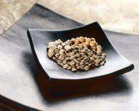 Sortiment av torkade legumes Royaltyfri Fotografi