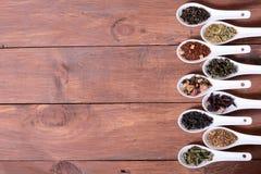 Sortiment av torr tea arkivbild