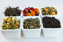 Sortiment av torr tea Olika sorter av te som isoleras på vit Olika sorter av teblad Tesammansättning med olik snäll nolla Arkivfoton
