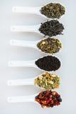 Sortiment av torr tea Olika sorter av te som isoleras på vit Olika sorter av teblad Tesammansättning med olik snäll nolla Arkivbild