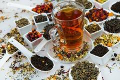Sortiment av torr tea Olika sorter av te som isoleras på vit Olika sorter av teblad Tesammansättning med olik snäll nolla Arkivbilder