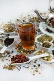 Sortiment av torr tea Olika sorter av te som isoleras på vit Olika sorter av teblad Tesammansättning med olik snäll nolla Royaltyfri Fotografi