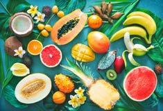 Sortiment av tropiska frukter med palmblad och den exotiska blomman arkivfoto